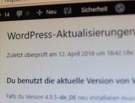 WordPress Updates: einfach, aber bedacht